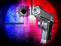 Newtown Shooting Ignites Discussion on Urban Gun Violence
