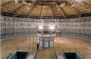 CCA Rakes In Prison Profits On Imprisonment Of Minorities