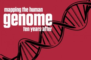 One race and many ethnic groups - the Human Genome findings confirm it. Photo Credit: news.harvard.edu